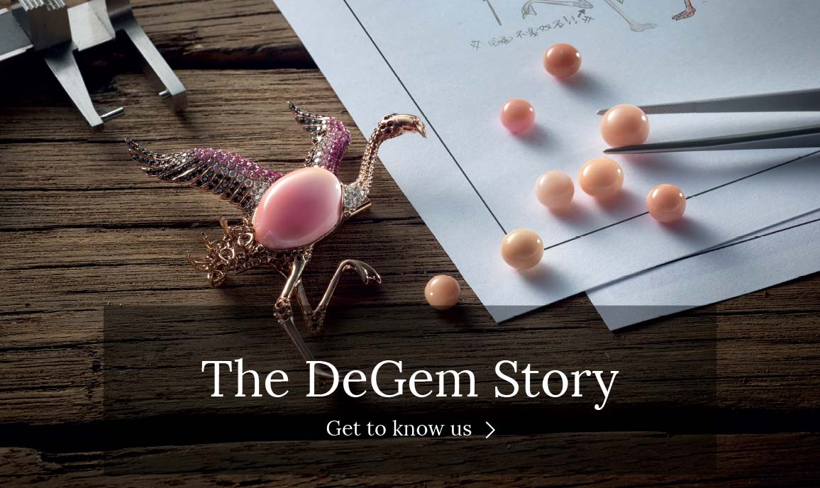 The DeGem Story