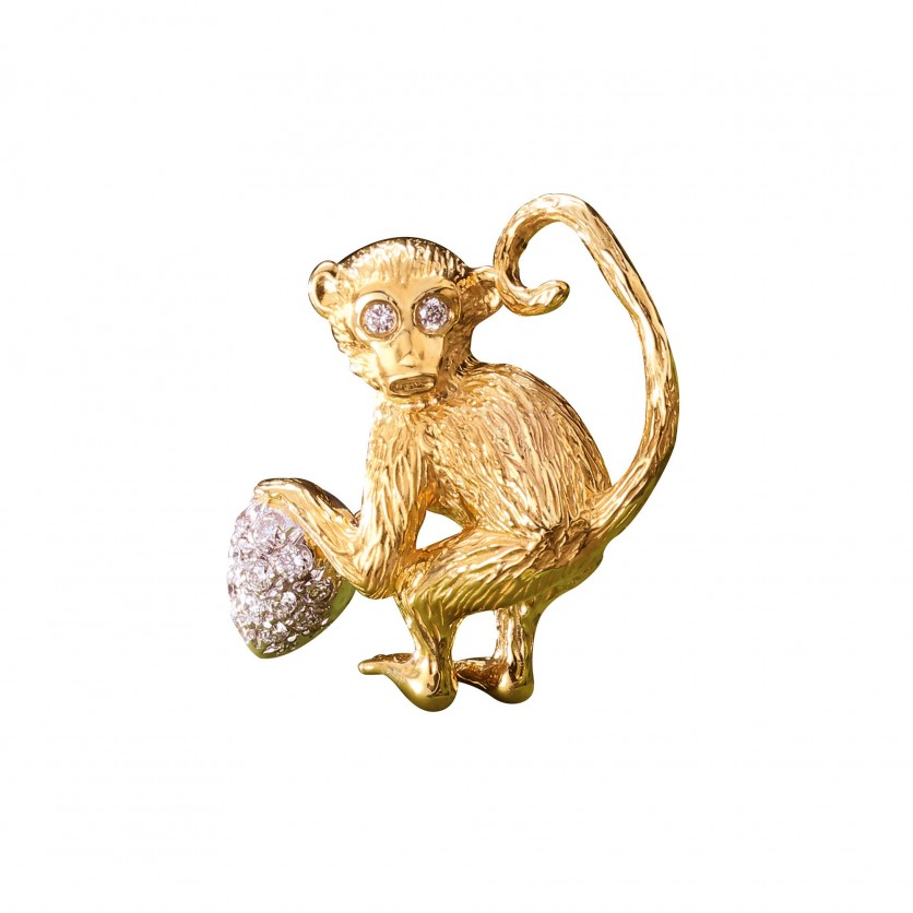 Curious Gold Monkey